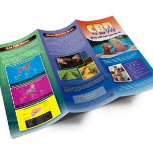 Tri-Fold-Brochure-Mock-up-Template-Outside