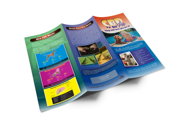 Tri-Fold-Brochure-Mock-up-Template-Outside